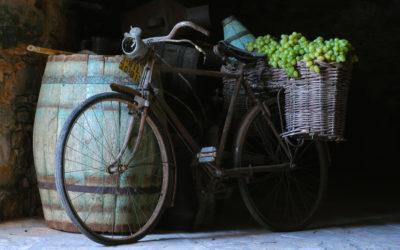 La vente en ligne de vin bio